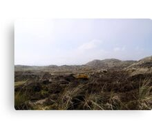 Sand Dunes and Sea Grass in the coastal fog Canvas Print