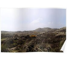 Sand Dunes and Sea Grass in the coastal fog Poster