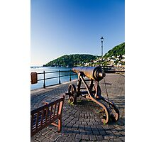 Dartmouth Harbour Photographic Print