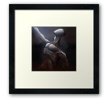 Rescued from the Mire Framed Print