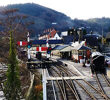 Llangollen Steam Railway Station by artfulvistas