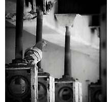 A Gear In The Machine Photographic Print
