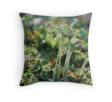 Cladonia  Pyxidata   Throw Pillow