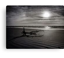 Log on a Beach Canvas Print