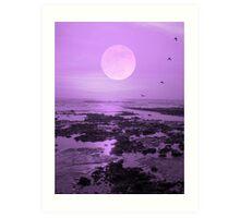 Moonlit Flight Art Print
