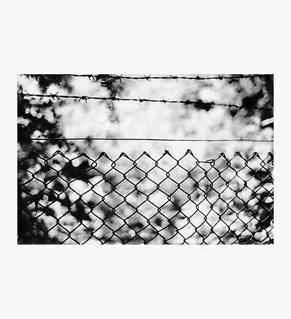 Nature, captured Photographic Print