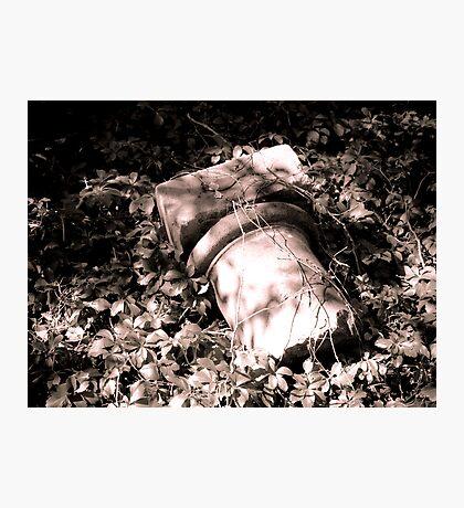 Fallen Stonework Photographic Print