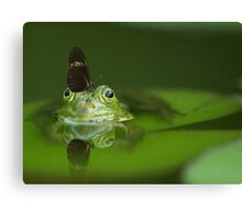 Butterfly And Frog Canvas Print
