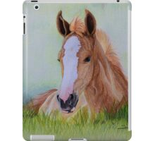 """""""Young Flame"""" - Criollo colt iPad Case/Skin"""