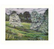 Hawthorn Art Print