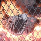 Fire by dancegirl656