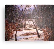 Snowy Woods Metal Print