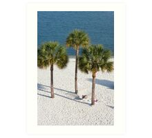 Lazy Afternoon Under The Palm Trees Art Print