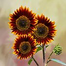Three Painted Sunflowers Plus Two Buds by Diane Schuster