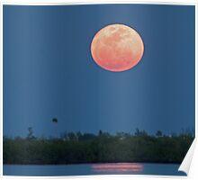 Island moon Poster