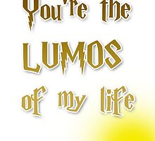 You're the Lumos of my life by fashprints