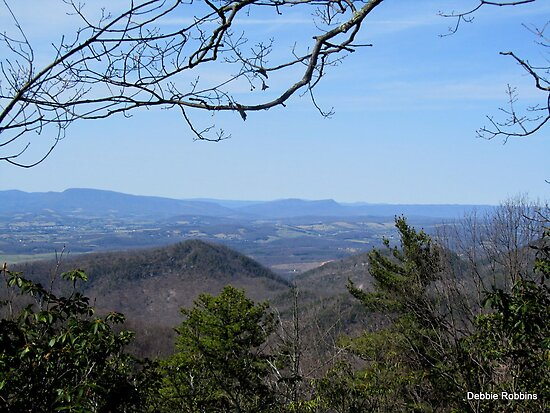 Blue Ridge Parkway Vista by Debbie Robbins