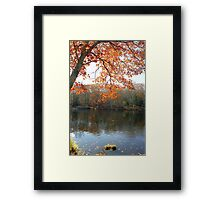 Autumn Foliage in New England Framed Print