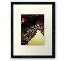 INKBLOT #076 Framed Print