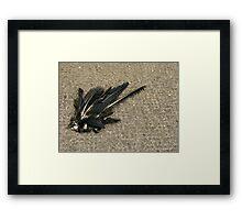 Morbid feathers Framed Print
