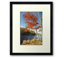 Autumn Foliage in Connecticut, New England Framed Print