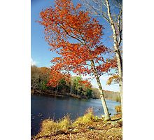Autumn Foliage in Connecticut, New England Photographic Print