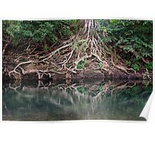 Reflections in a country stream Poster