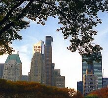 NYC View from Central Park Autumn Foliage by Alberto  DeJesus