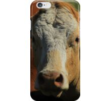 Cow on the Prairies iPhone Case/Skin