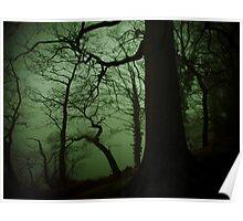 Overhanging creepy tree. Poster