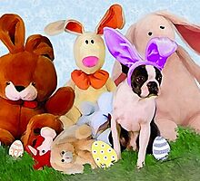 Easter Boston Bunnies .. by Cazzie Cathcart