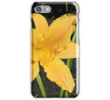Yellow Lily in a Garden iPhone Case/Skin