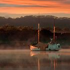 Gordon River, Tasmania by Paul Oliver