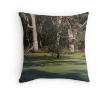 Reborn - Youngs Rd, Torrumbarry Throw Pillow