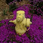 """SPRINGTIME.  FIRE HYDRANT"" by waddleudo"