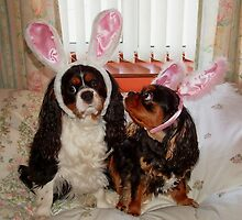 My Easter Bunnies !!! by AnnDixon