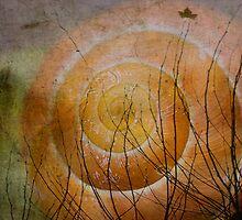 Snail by RosiLorz