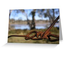 Barbed wire fence, Interlaken, Tasmania Greeting Card