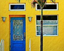 The beauty of color by Lynne Prestebak