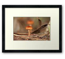 Tom Thumb Framed Print