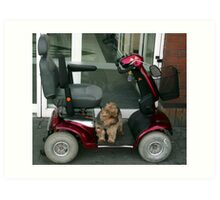 Where has my Driver gone Now !!! Art Print