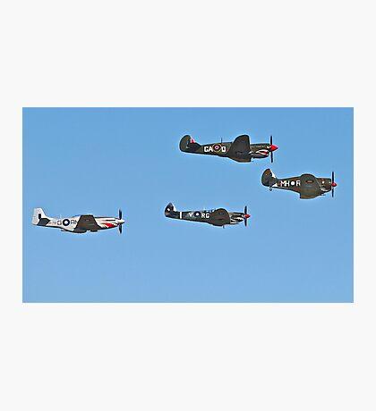 Stunning WWII War Birds. Photographic Print