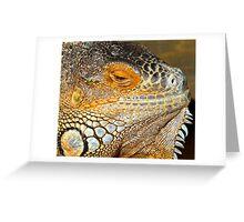 Lazy Daze Iguana Greeting Card