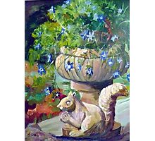 Stone squirrel plantpot Photographic Print
