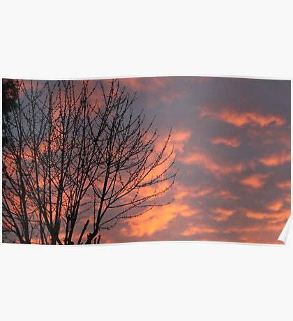 Orange Sky Poster