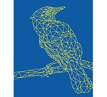 Neon Yellow Bird Photographic Print