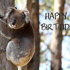 Happy Birthday Koala by Caroline Hannessen