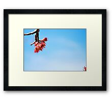 from above, so below  Framed Print