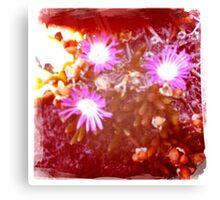 Hipsta beach flowers Canvas Print