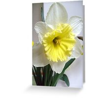 White and yellow Greeting Card